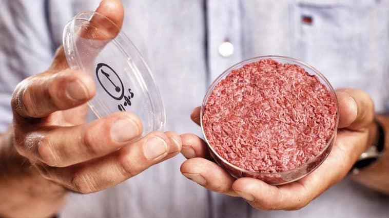 clean meat - künstliches Fleisch
