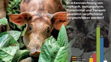 Kennzeichnung von Fleischprodukten